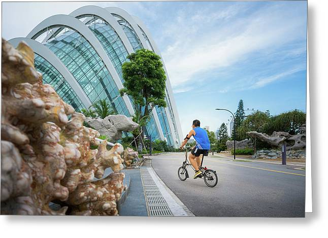 Asian People Take Eaercise By Bicycle In Park Greeting Card