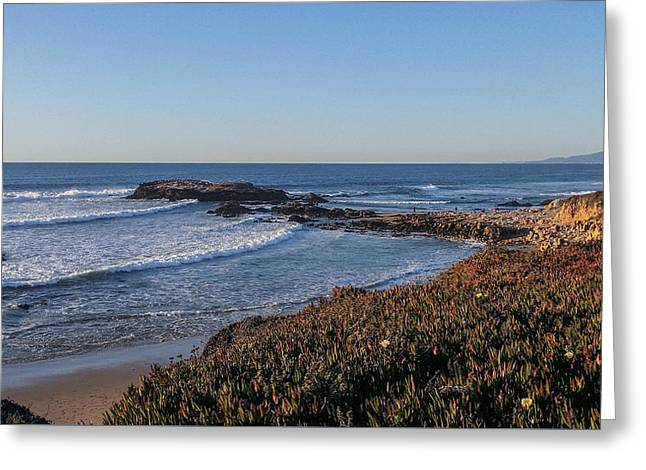 Asilomar Shoreline Greeting Card