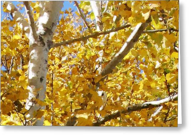 Aspen 2 Greeting Card