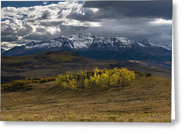 Greeting Card featuring the photograph Aspen Circle by Chuck Jason