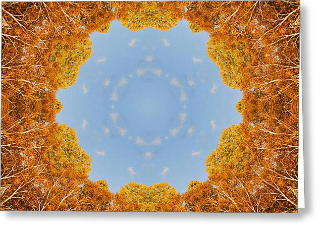 Greeting Card featuring the photograph Aspen Kaleidoscope by Bill Barber