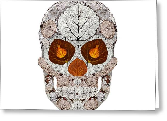 Aspen Leaf Skull 11 Greeting Card by Agustin Goba
