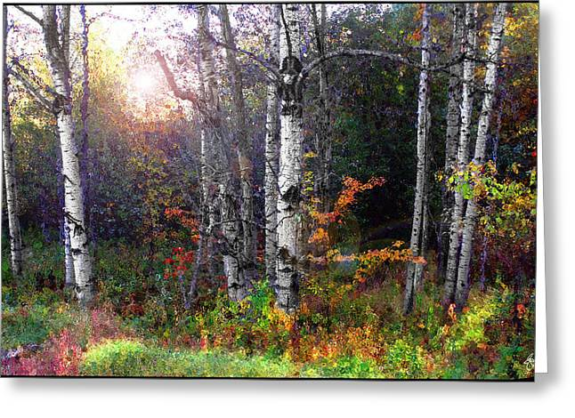 Greeting Card featuring the photograph Aspen Morning by Wayne King