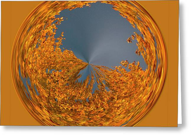 Greeting Card featuring the photograph Aspen Orb by Bill Barber