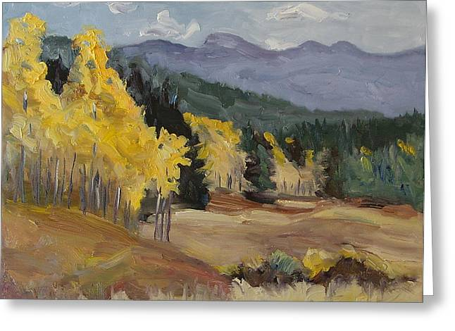Aspen Tree Splash Of Fall Steamboat Springs Colorado Greeting Card by Zanobia Shalks