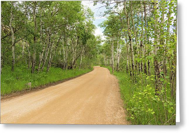 Greeting Card featuring the photograph Aspen Way by Tom Potter