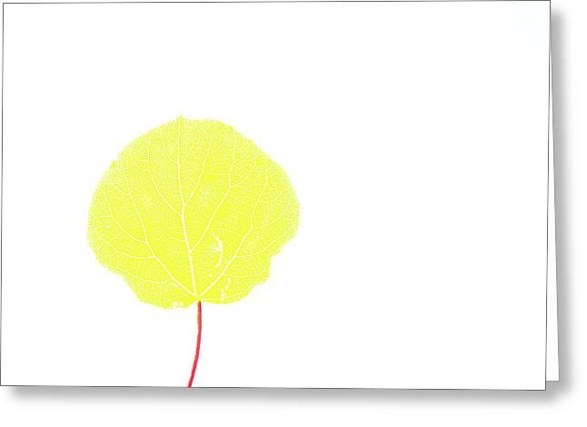 Aspen Yellow Greeting Card