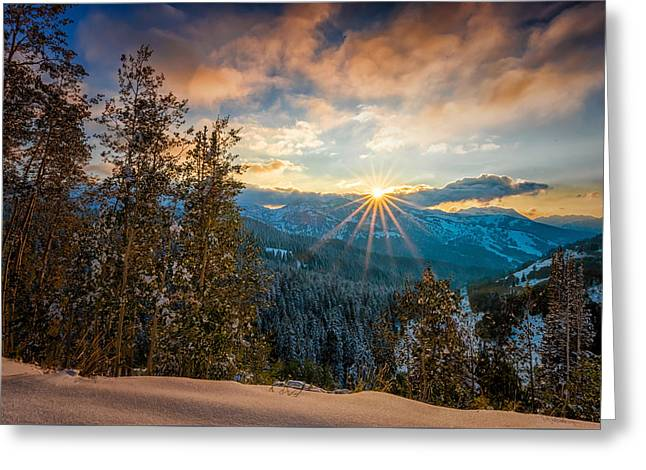 Aspens Sunset After Snowfall Greeting Card