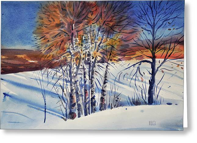 Snow Drifts Greeting Cards - Aspin In The Snow Greeting Card by Donald Maier