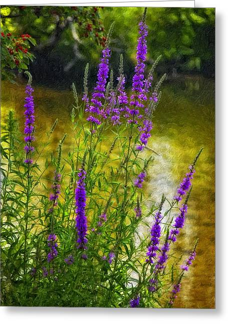 Stream Digital Greeting Cards - Aspirations impasto Greeting Card by Steve Harrington