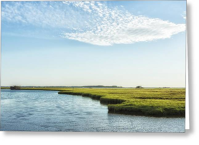 Greeting Card featuring the photograph Assateague Island by Belinda Greb