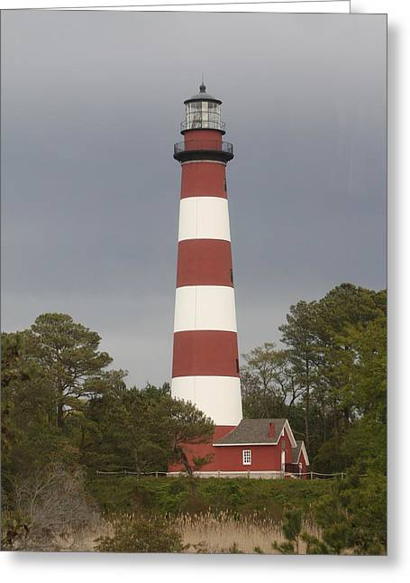 Assateague Lighthouse Greeting Card