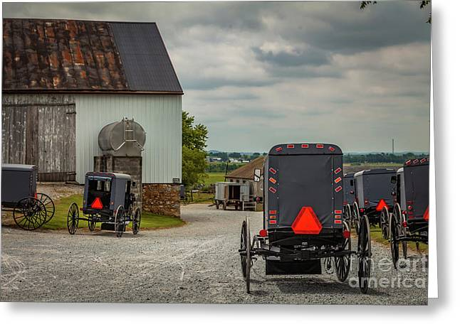 Assorted Amish Buggies At Barn Greeting Card