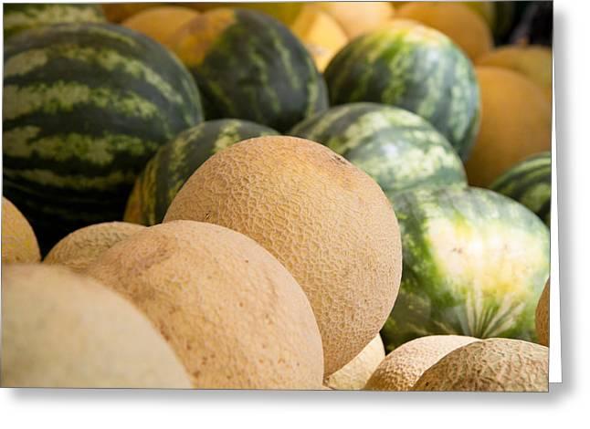 Assortment Of Melons Greeting Card by Dina Calvarese