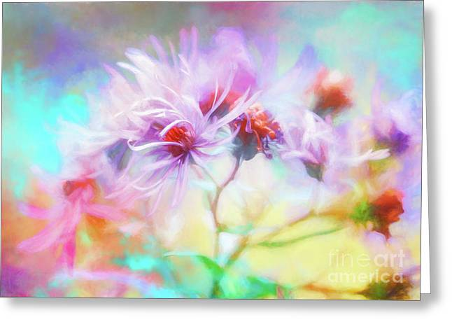 Asters Gone Wild Greeting Card
