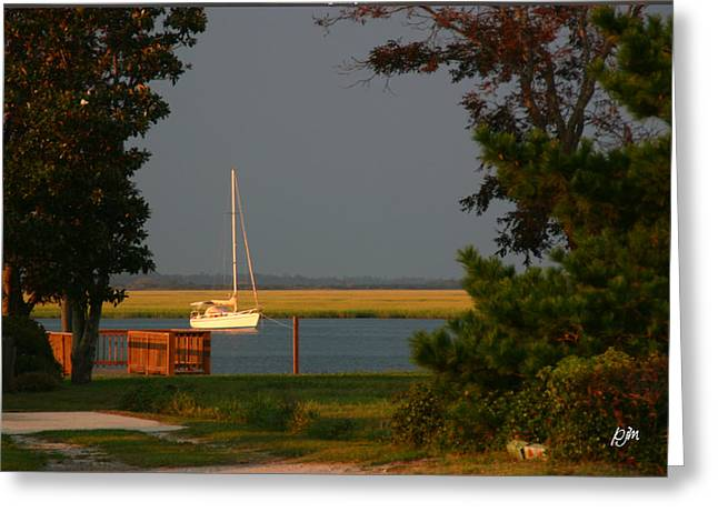 Greeting Card featuring the photograph At Anchor by Phil Mancuso