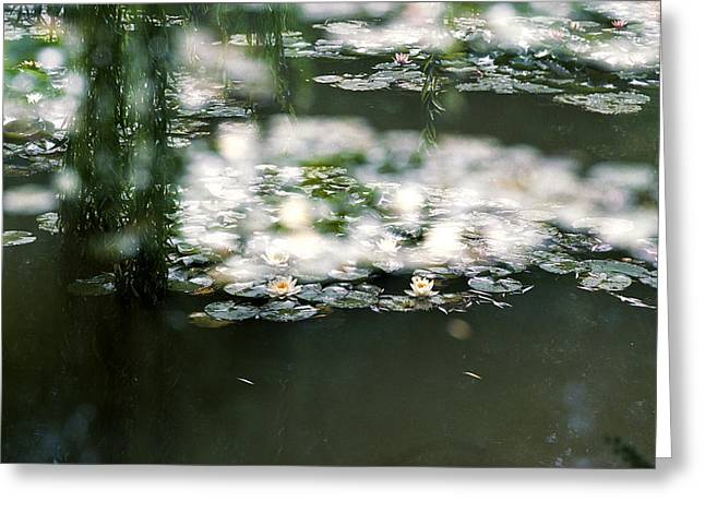 Greeting Card featuring the photograph At Claude Monet's Water Garden 5 by Dubi Roman