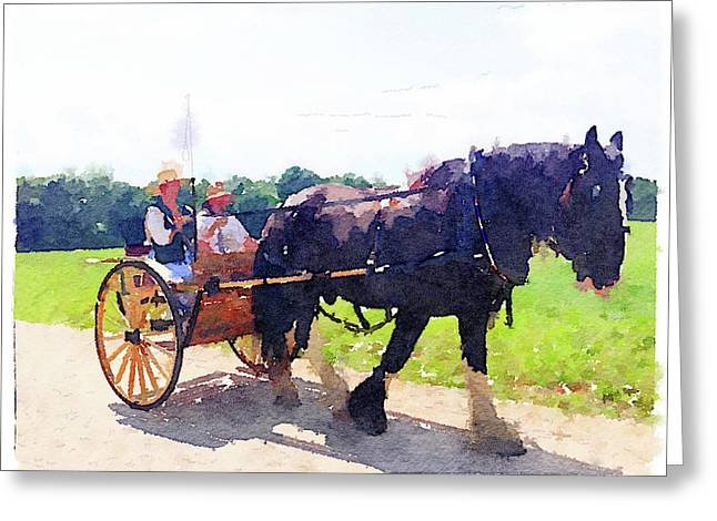 Horse And Buggy At Mount Vernon Greeting Card