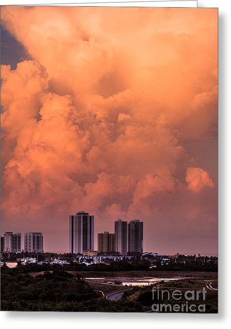 At Sunset In West Palm Beach Greeting Card by Zina Stromberg