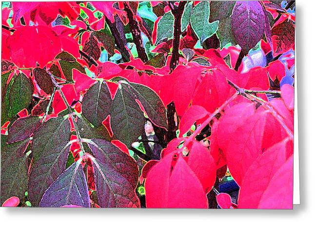 Autum Abstract Greeting Cards - At The Edge  Greeting Card by Lyle Crump