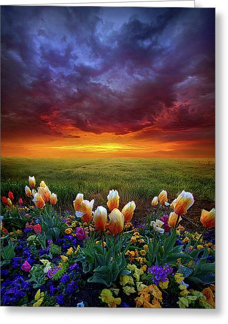 At The End Of Darkness Greeting Card by Phil Koch