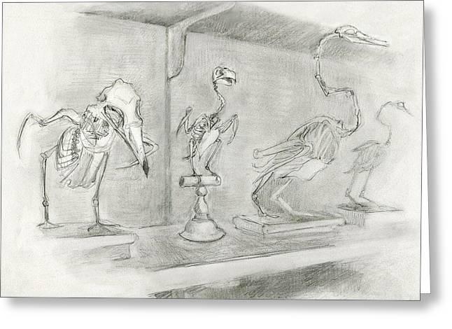 Bird Skeletons Greeting Card