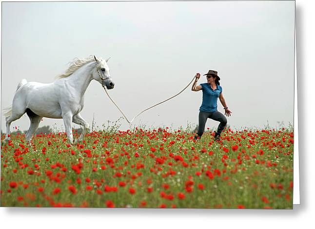 At The Poppies' Field... 2 Greeting Card