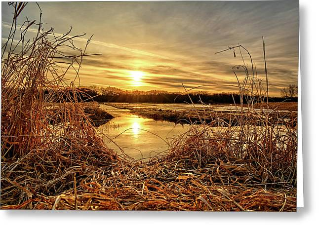 At The Rivers Edge Greeting Card by Bonfire Photography