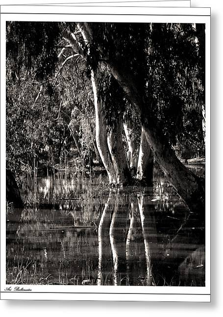 Greeting Card featuring the photograph At The Swamp by Arik Baltinester