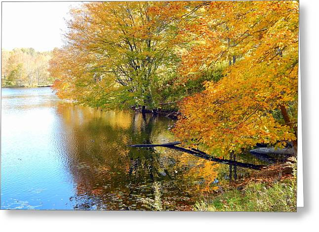 At The Water's Edge Greeting Card