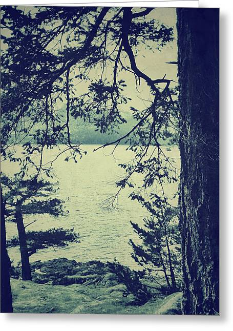 At The Water's Edge Greeting Card by Connie Handscomb
