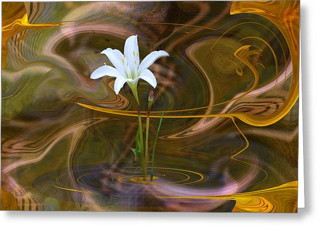Atamasco Lily In Abstract Greeting Card by rd Erickson