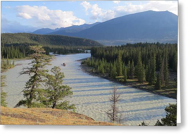 Athabasca River - Jasper Greeting Card