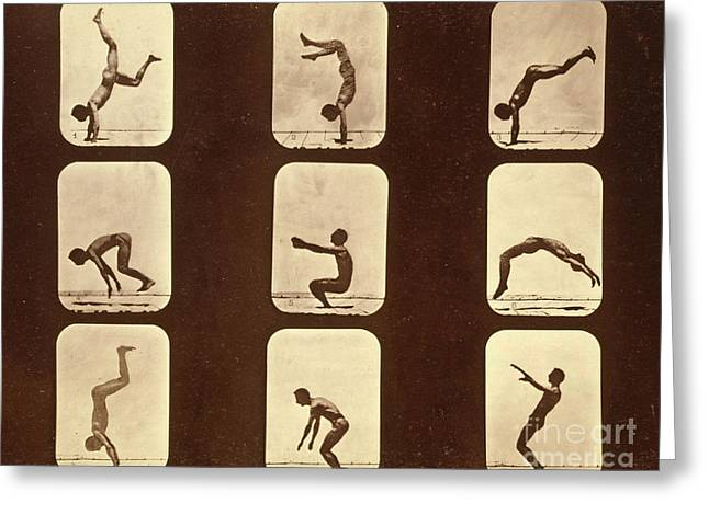 Athletes Greeting Card by Eadweard Muybridge