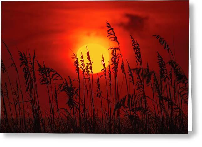 Atlantic Sunrise #2 Greeting Card