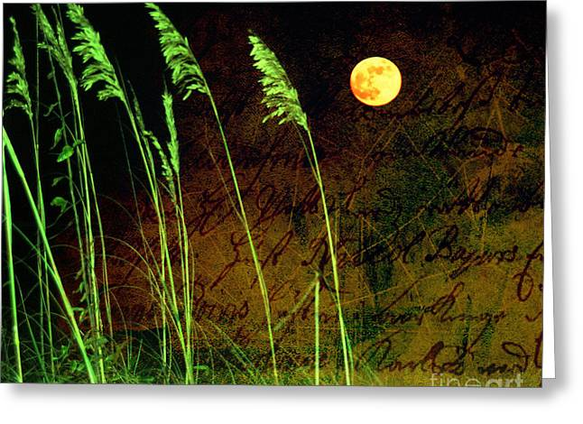 Au Claire De La Lune Greeting Card by Susanne Van Hulst