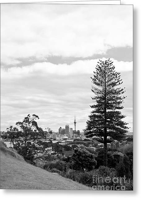 Auckland City New Zealand Greeting Card by Yurix Sardinelly