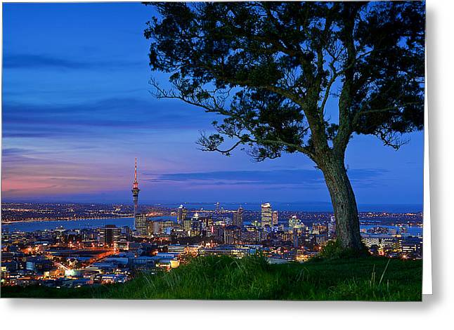 Auckland Greeting Card
