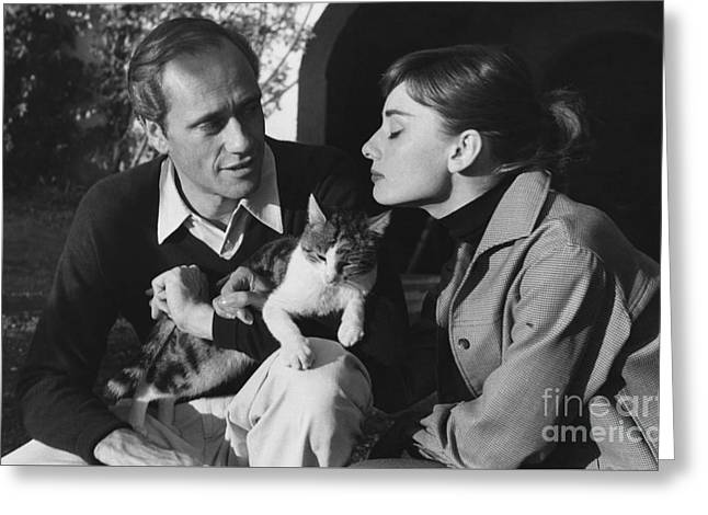 Audrey Hepburn And Mel Ferrer Greeting Card by George Daniell