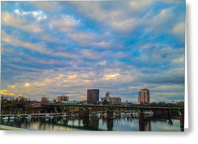 Augusta Greeting Card by Stacy Sikes