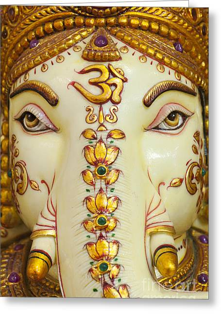 Aum Ganesha Greeting Card by Tim Gainey