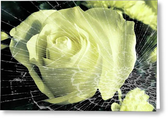 Aunt Edna's Rose Greeting Card