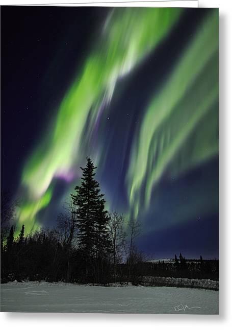 Aurora Grasp Greeting Card