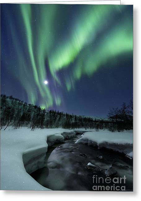 Greeting Card featuring the photograph Aurora Borealis Over Blafjellelva River by Arild Heitmann