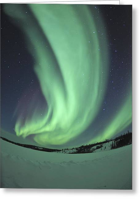 Winter Night Greeting Cards - Aurora Borealis Over Prosperous Lake Greeting Card by Jiri Hermann