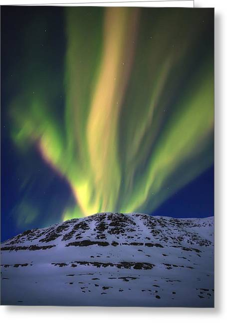 Aurora Borealis Over Toviktinden Greeting Card by Arild Heitmann