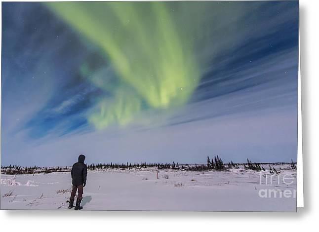 Aurora Borealis Under Bright Moonlight Greeting Card by Alan Dyer
