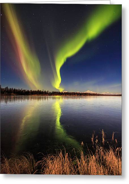 Aurora Glide Greeting Card