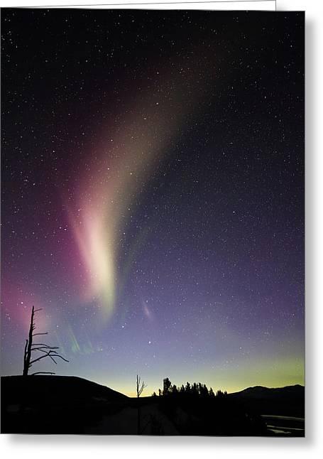 Auroral Phenomonen Known As Steve 2 Greeting Card by Jean Clark