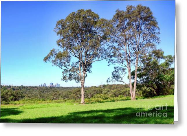 Greeting Card featuring the photograph Aussie Gum Tree Landscape By Kaye Menner by Kaye Menner